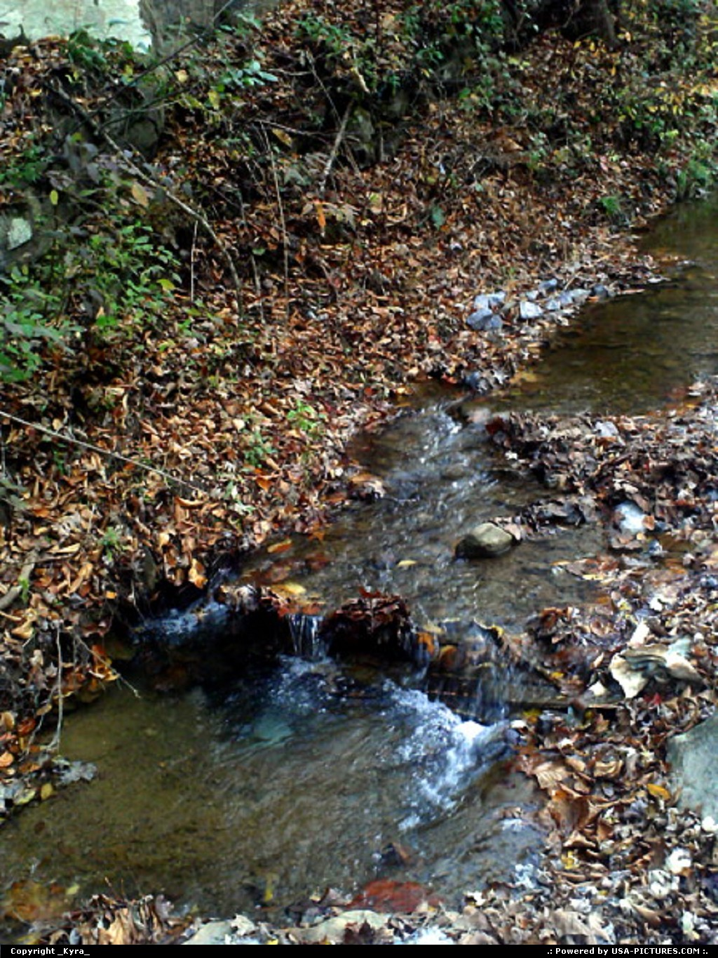 Picture by _Kyra_: Clear Fork W-virginia   creek, water, crystal, fall, autum