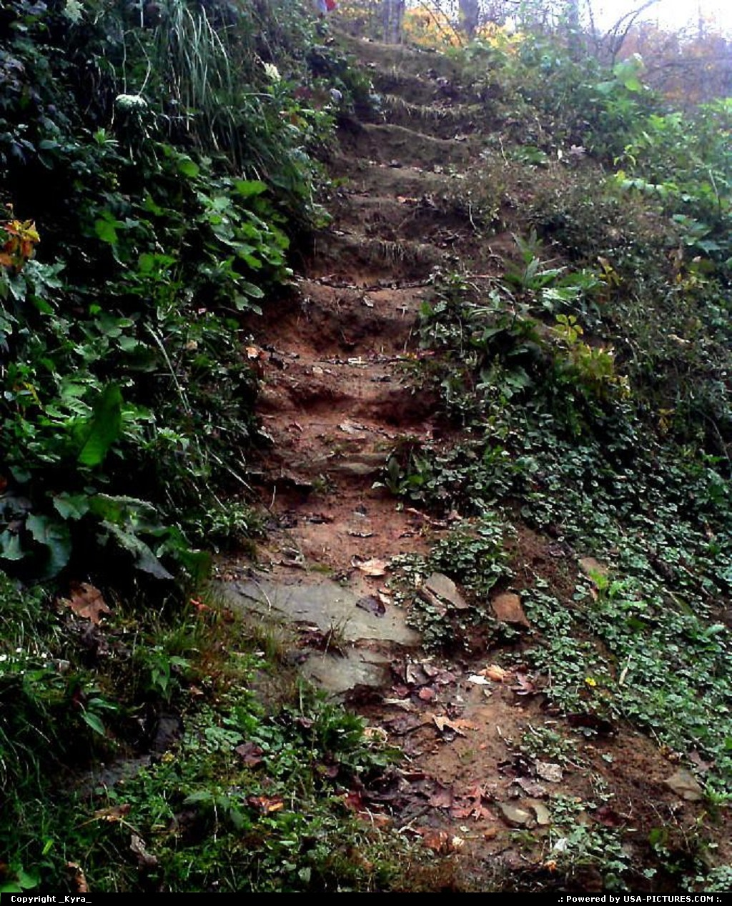 Picture by _Kyra_: Clear Fork W-virginia   steps, mountain, rain, water, mountain
