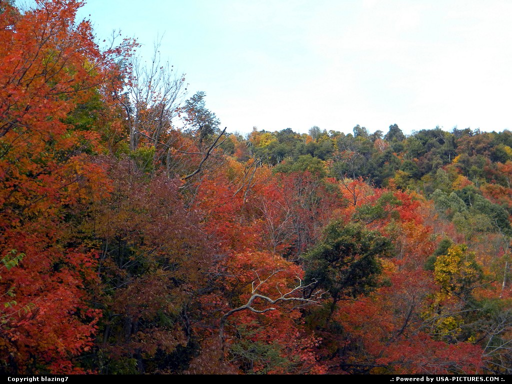 Picture by blazing7:New CreekW-virginia