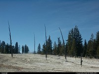 Yellowstone national park: Wilderness in Yellowstone