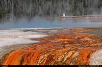 Not in a CityYellowstone : YELLOWSTONE WYOMING