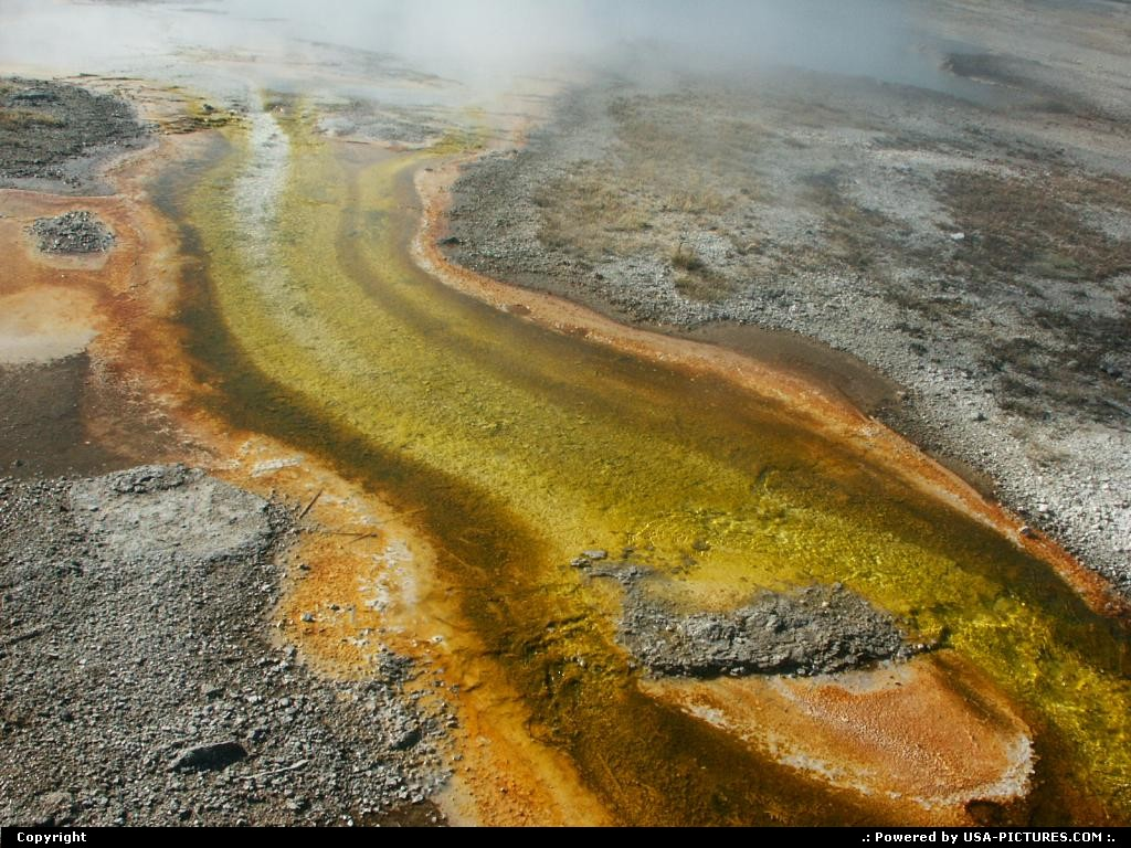 Picture by elki:  Wyoming Yellowstone  geyser, spring