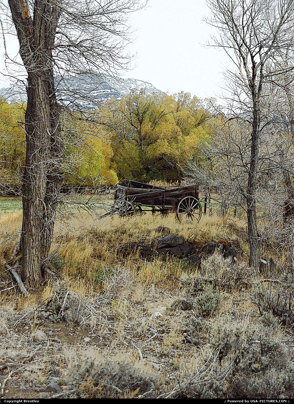 Picture by Brentlee: Wapiti Wyoming   wagon